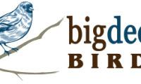 Big Decade Birder