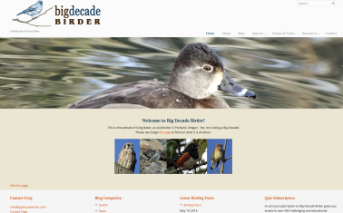 bigdecadebirder-website